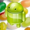 Galaxy Ace 2 ve S Advance için Jelly Bean