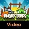 Angry Birds Gerçek Olursa